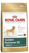 Conseils et alimentation du golden retriever